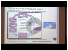 Los Alamos Council On Cancer :: Pancreatic Cancer